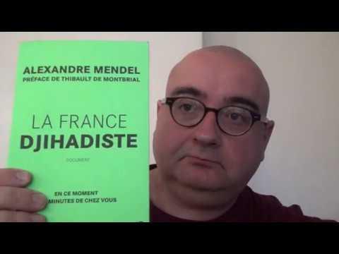 La France djihadiste (Alexandre Mendel)