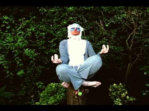 Rafiki meditating - YouTube