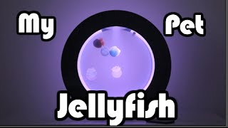 My Pet Jellyfish! | Alybongo