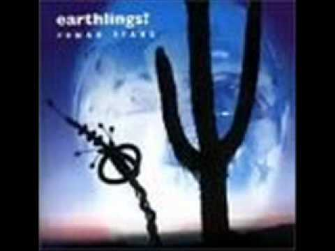 Earthlings - I Could Be Wrong (But I Don't Think So) mp3