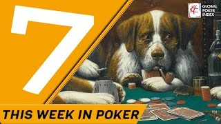 Today on Poker7 -  Dogs Playing Poker