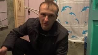 Люди не топите котят! Сайт http://givotniymir.ru поможет их раздать добрым людям