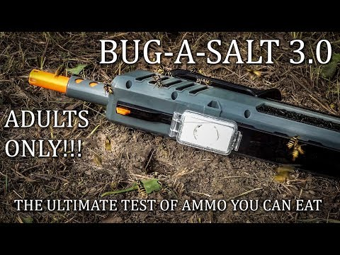 Bug-A-Salt 3.0 Black Fly Edition Best SALT To Use Yellow Jacket Wasps  Challenged DO NOT DO THIS!