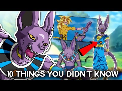 10 Things You Didnt Know About Beerus (Probably) - Dragon Ball Super