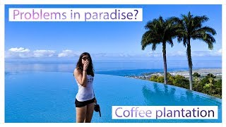Problems in paradise? Coffee plantation | Hawaii