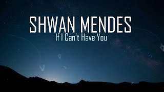 Baixar Shawn Mendes - If I Can't Have You (Lyrics)