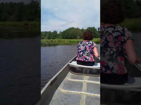 Marcel en Annet Schut kanoën op de Regge en Vecht 2018(1)
