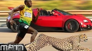 7 FASTEST PEOPLE IN THE WORLD WHO SET THE WORLD RECORD