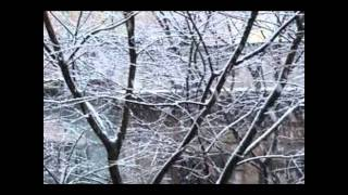 "Claude Debussy-""The snow is dancing""/Children"