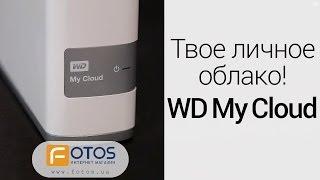 Обзор сетевого жесткого диска Western Digital My Cloud