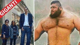 Repeat youtube video I più incredibili giganti ancora in vita