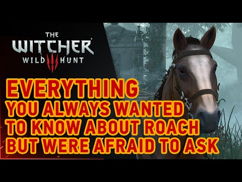 CD Projekt Red Explains Why The Horse In 'The Witcher 3' Was