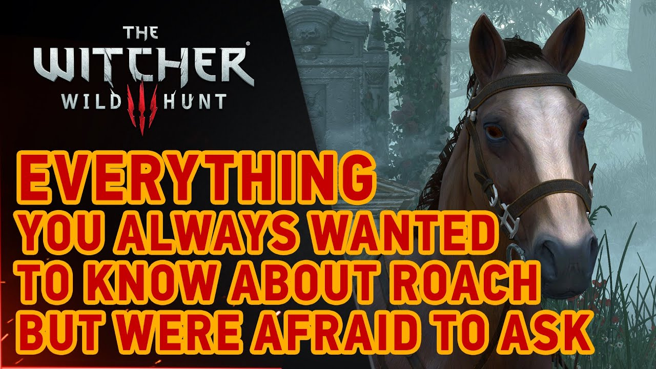 CD Projekt Red Explains Why The Horse In 'The Witcher 3' Was So