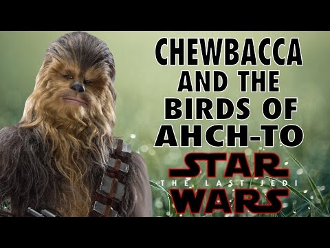 Thumbnail: CHEWBACCA AND THE BIRDS OF AHCH-TO