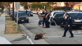 Hawthorne, CA police kill dog, discredit themselves with propaganda response