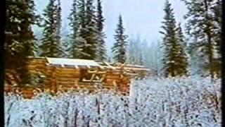 Ein Blockhaus am Yukon
