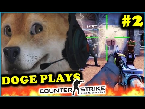 WHEN DOGE PLAYS CSGO #2! BEST FUNNY DOG STREAMER MOMENTS (TheoneManny ,  Best of Twitch, Fails)