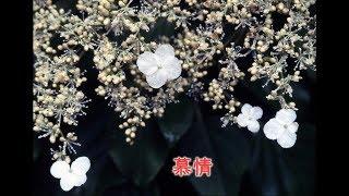 NHK-BS 「 新選組血風録 」 主題歌.