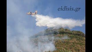 Πυρκαγιά στο δάσος του Παλατιανού Κιλκίς-Eidisis.gr webTV