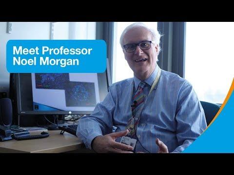Meet our diabetes researcher: Professor Noel Morgan | Research | Diabetes UK