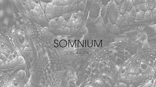 Deep Dream animation: Somnium 1