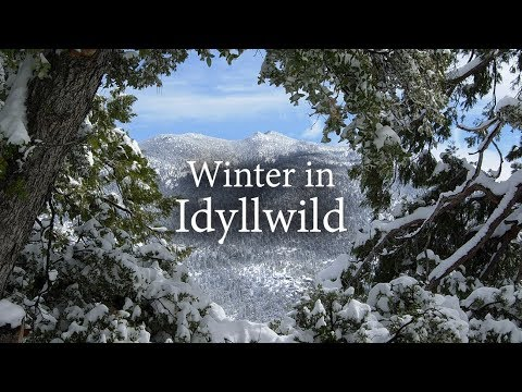 Winter in Idyllwild