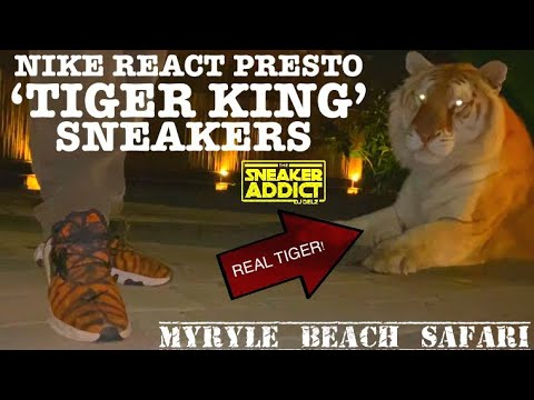 Tiger King Nike Sneaker On Feet With A REAL FN TIGER 🐅 At ...