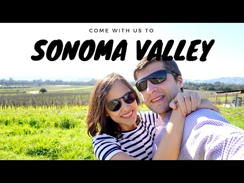 Sonoma Valley Wineries Tour | Best Wineries & Itinerary | California VLOG