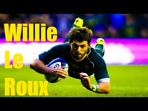 Willie Le Roux Rugby Tribute (HD)