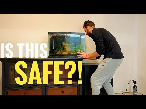 HOW TO Move A FISH TANK Safely | Beautiful Planted Aquarium Cinematic