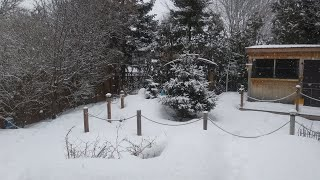 What to do wнen your Pond Freezes in a Canadian winter..