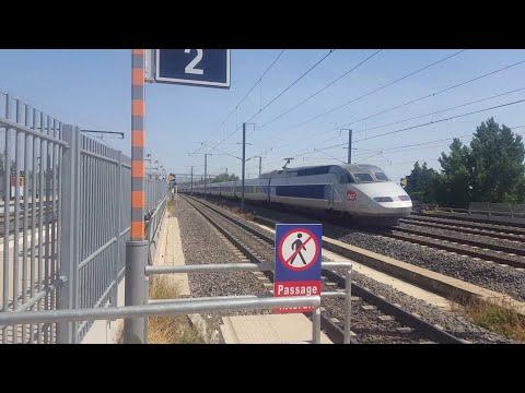 Trains at Avignon TGV LGV Méditerranée (Eurostar, TGV, Lyria, Ouigo, TER) (ENG Commentary) 3/9/17