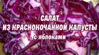 Салат из краснокочанной капусты.  Рецепт салат из красной капусты