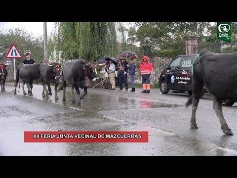XII Feria Junta Vecinal de Mazcuerras