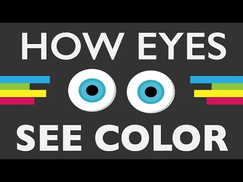 how-do-your-eyes-see-color?