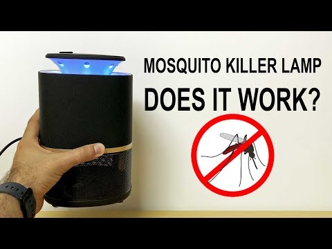 Mosquito Killer Lamp Review   You NEED It For Summer