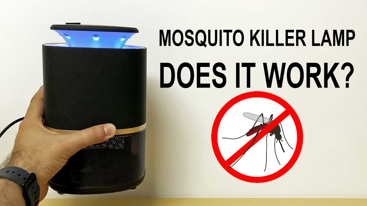 ReviewYou Need Mosquito For It Killer Summer Lamp TwuXPZOki