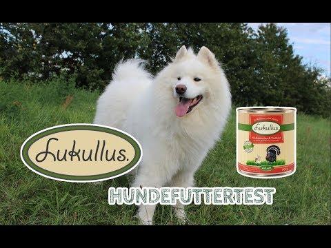 LUKULLUS Hundefutter Im Test | Nassfutter Für Hunde | JulisTierfuttertest #16
