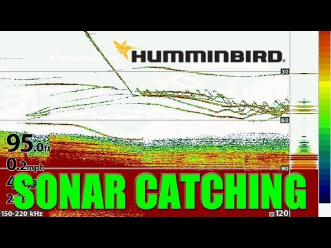 Tips 'N Tricks 229: Vertical Sonar Fishing With Humminbird HELIX