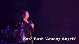 Kate Bush 'Among Angels'