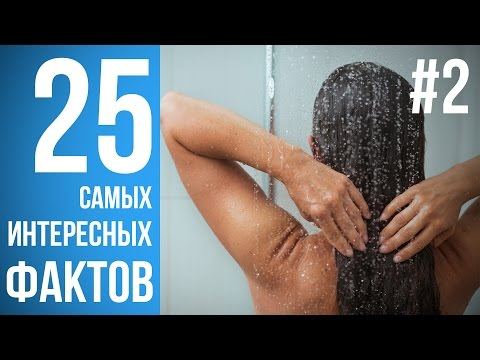 Сочинения на тему по русскому языку и литературе для 1, 2