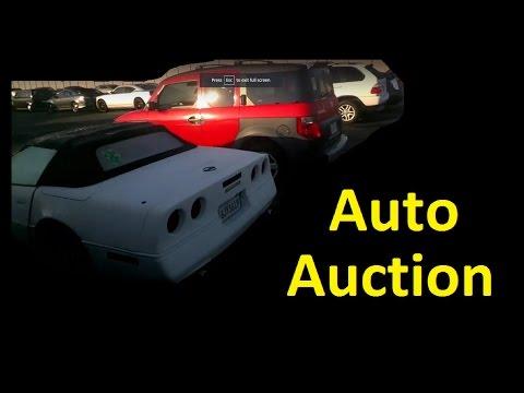 Wholesale Auto Auction Dealer Only Cars Vehicles Video