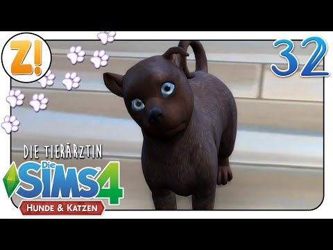 Sims 4 [Dr. Smith & die Tiere]: Can you feel the love tonight #32   Let's Play [DEUTSCH]