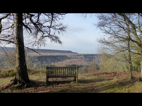 Cropton Forest, North York Moors - 7 April 2018