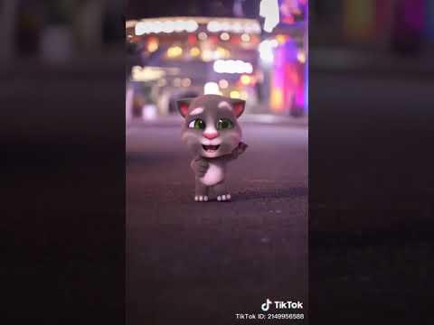 Hình Nền Mèo Tom Dễ Thương