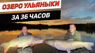 Озеро Ульяныки Ловля карпа за 36 часов