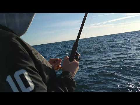 Deep Sea Fishing Daytona Beach With Captain Leon