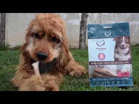 bully-sticks-premium-dog-chews---all-natural-rawhide-alternative---long-lasting-dog-treats