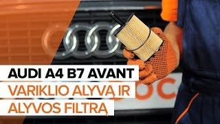 Kaip pakeisti variklio alyvą ir alyvos filtrą AUDI A4 B7 AVANT [PAMOKA]