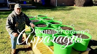 HD How To Grow Asparagus in Containers (Part 1 of 2)